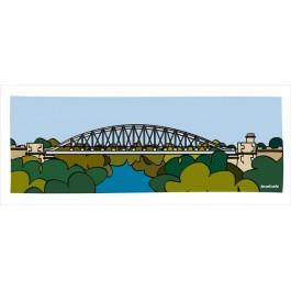 Alzira Pont de Ferro